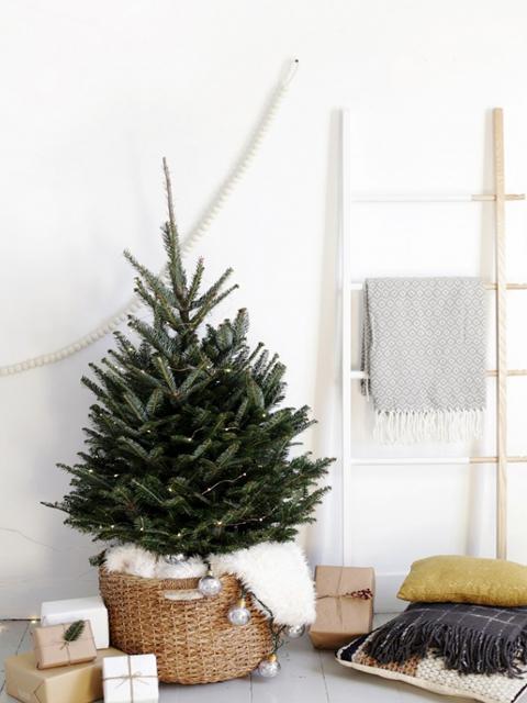 Jak Ubrać Choinkę Na Boże Narodzenie 2018